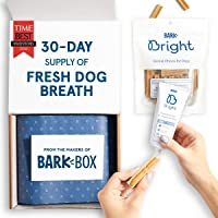 BarkBox Bright Toothpaste & Toothbrush Chews Kit - Dental Treats for Dogs and Cats   Vet-Recommended   Freshens Breath & Reduces Plaque Buildup   Made with Real Chicken   Small Kit