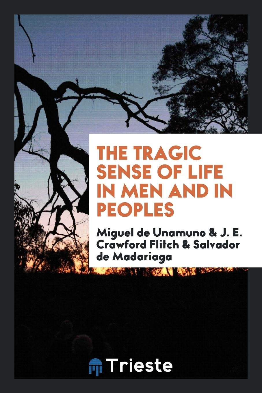 Download The Tragic Sense of Life in Men and in Peoples pdf epub