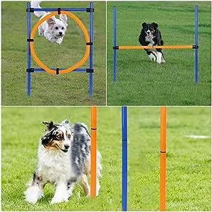 Amazon.com : 3PC Portable Pet Agility Pet Training Set Dog ...
