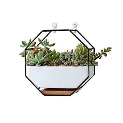 Ivolador Modern Wall Planter, Metal Wire Octagon Design Wall-Mounted Shelves with Ceramic Flower Pot, Air Plant Container Hanging Vase Desktop Succulents Planter-Black: Garden & Outdoor