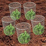 "Mr Garden Pest-Pet-Off Steel Wire Barrier Mesh Basket, Chicken Wire Cloche 11.8"" Dx12.2 H, 3pack"