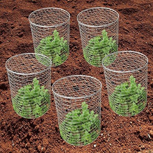 Mr. Garden Pest-Pet-Off Steel Wire Barrier Mesh Basket, Chicken Wire Cloche Stainless steel plant cover, 11.8