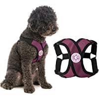 Gooby Choke Free Step-in Comfort X Dog Harness, Medium, Purple