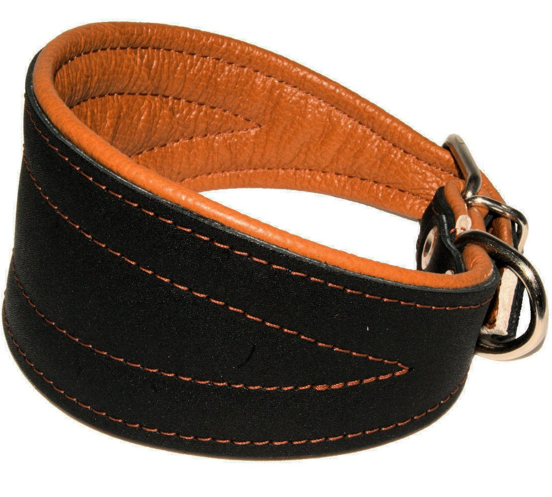 Leather extra wide tapered dog collar