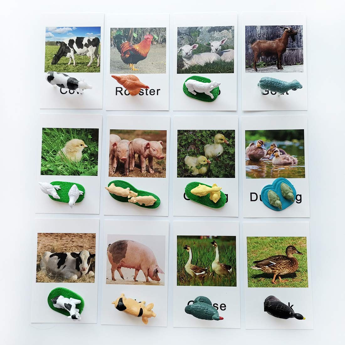 Montessori Animal Match - Miniature Farm Animal Toy Figurines with Matching Cards Montessori Language Materials Preschool Learning Toy NEWT033