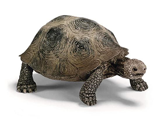 Buy Schleich Giant Turtle Online At Low Prices In India Amazon In