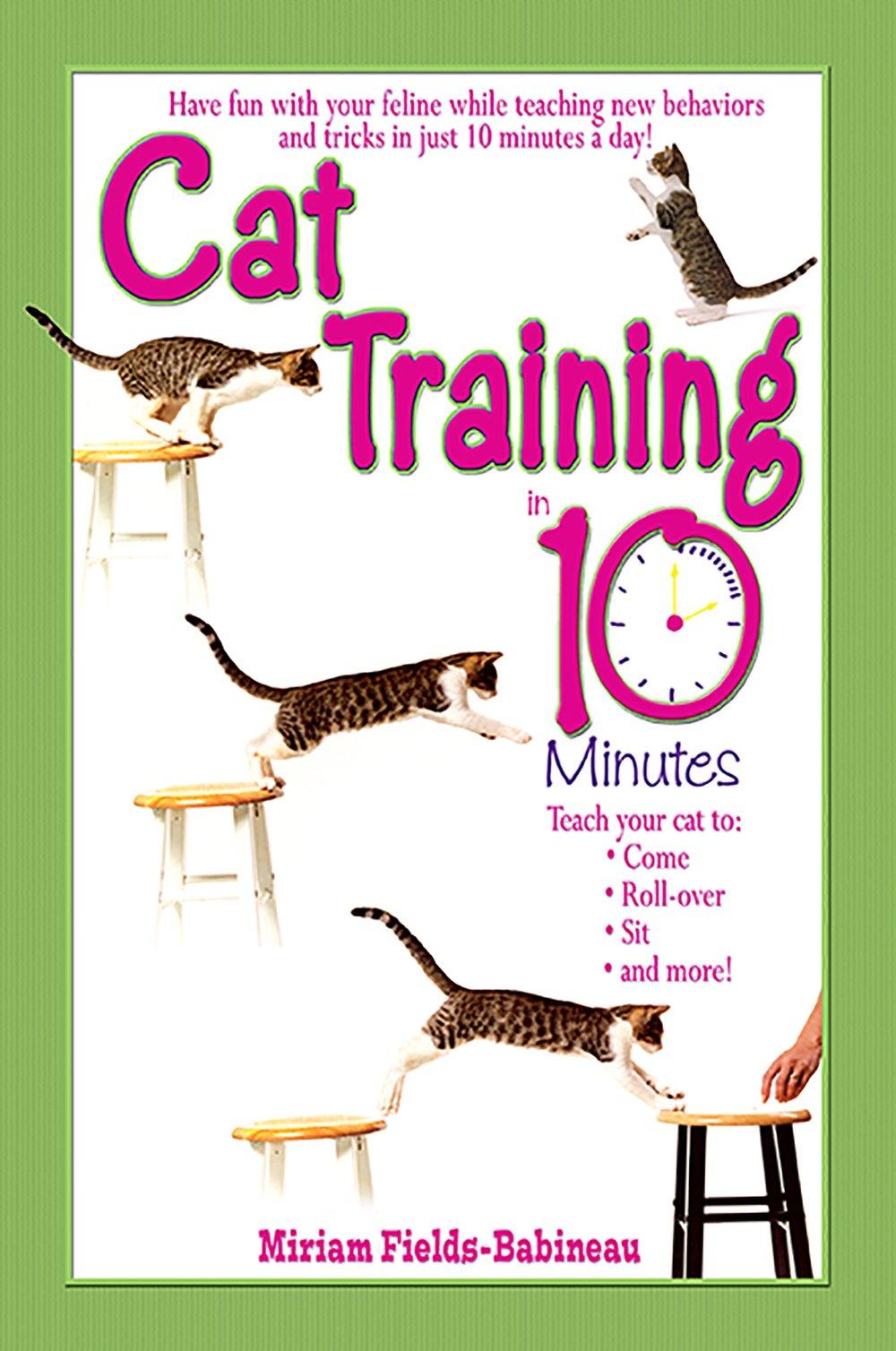 Training Minutes Miriam Fields Babineau product image