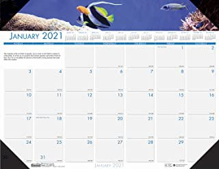 product image for House of Doolittle 2021 Monthly Desk Pad Calendar, Earthscapes Sea Life, 18.5 x 13 Inches, January - December (HOD1936-21)