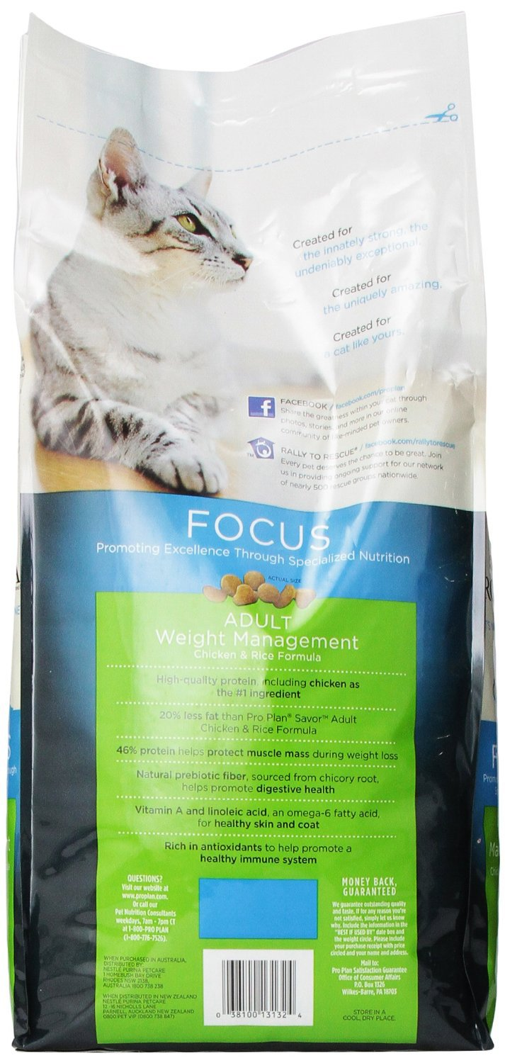 Amazon.com: ALIMENTO SECO PURINA PRO PLAN FOCUS para GATO ...