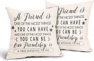 WINTERSUNNY Set of 2 Friend Throw Pillow Covers Forever Friends Pillow Case Gift for You Bestfriend Throw Pillow Cover Cotton Linen for Birthday Present Decorations Cushion Case 18x18In