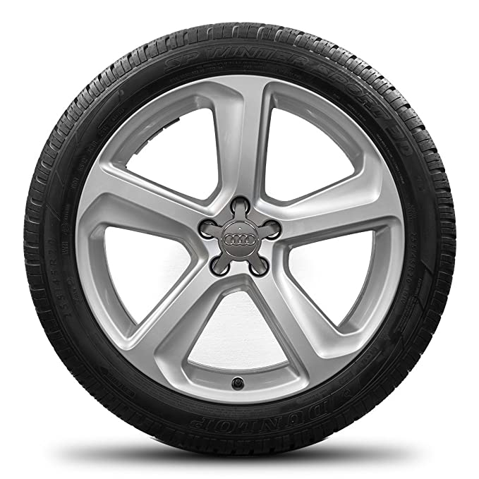 Audi Q5 SQ5 20 pulgadas Llantas Llantas Neumáticos de invierno invierno de ruedas S Line 8r0601025ca: Amazon.es: Coche y moto