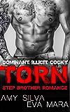 Torn: Juicy Stepbrother Romance