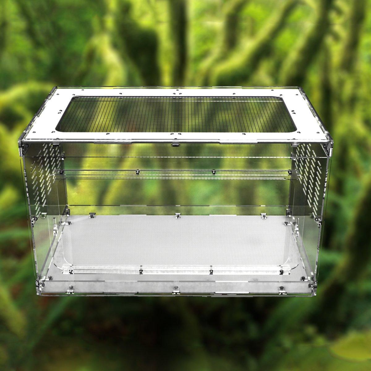 Dalle Craft Acrylic Reptile Terrarium Habitat for Arboreal Tarantulas Chameleon Green Anole or Other Reptiles (20x12x12 inches)