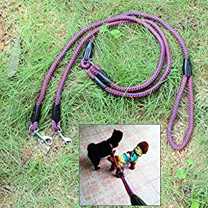 Durable 1-to-2 Nylon Training Traction Rope Leash for Pet Dog ¨C Red + Blue (130cm)