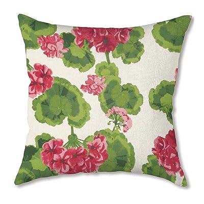 Plow & Hearth Polyester Classic Throw Pillow - 22 sq. x 8 Geranium : Garden & Outdoor