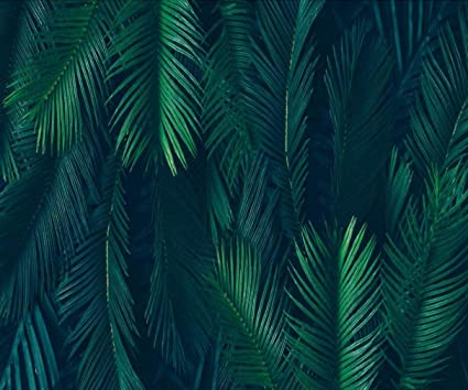 Amazon Com 10x8 Ft Green Fern Party Backdrop Beautiful Forest