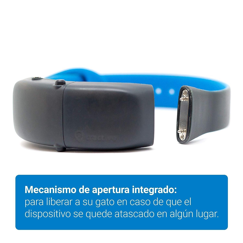 Localizador GPS para gatos - Collar GPS con mecanismo de aperture. Rastreador GPS resistente al agua: Amazon.es: Productos para mascotas
