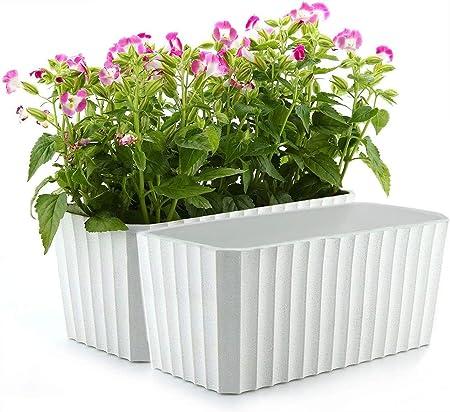 T4U Plastic Rectangular self watering Window Box product image