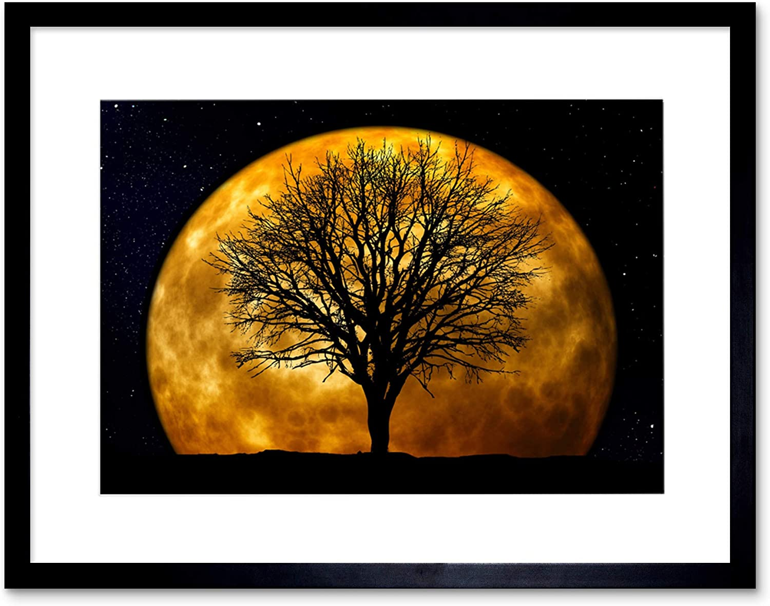 The Art Stop Photo Composition Nature Silhouette Moon Star Tree Framed Print F12X4249