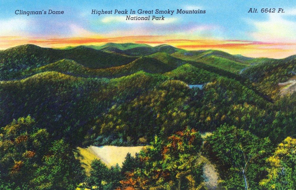 GREAT SMOKY MTS。国立公園、TN – クリングマンズドーム、最高ピークで公園の風景 36 x 54 Giclee Print LANT-30439-36x54 36 x 54 Giclee Print  B01MG34OJZ