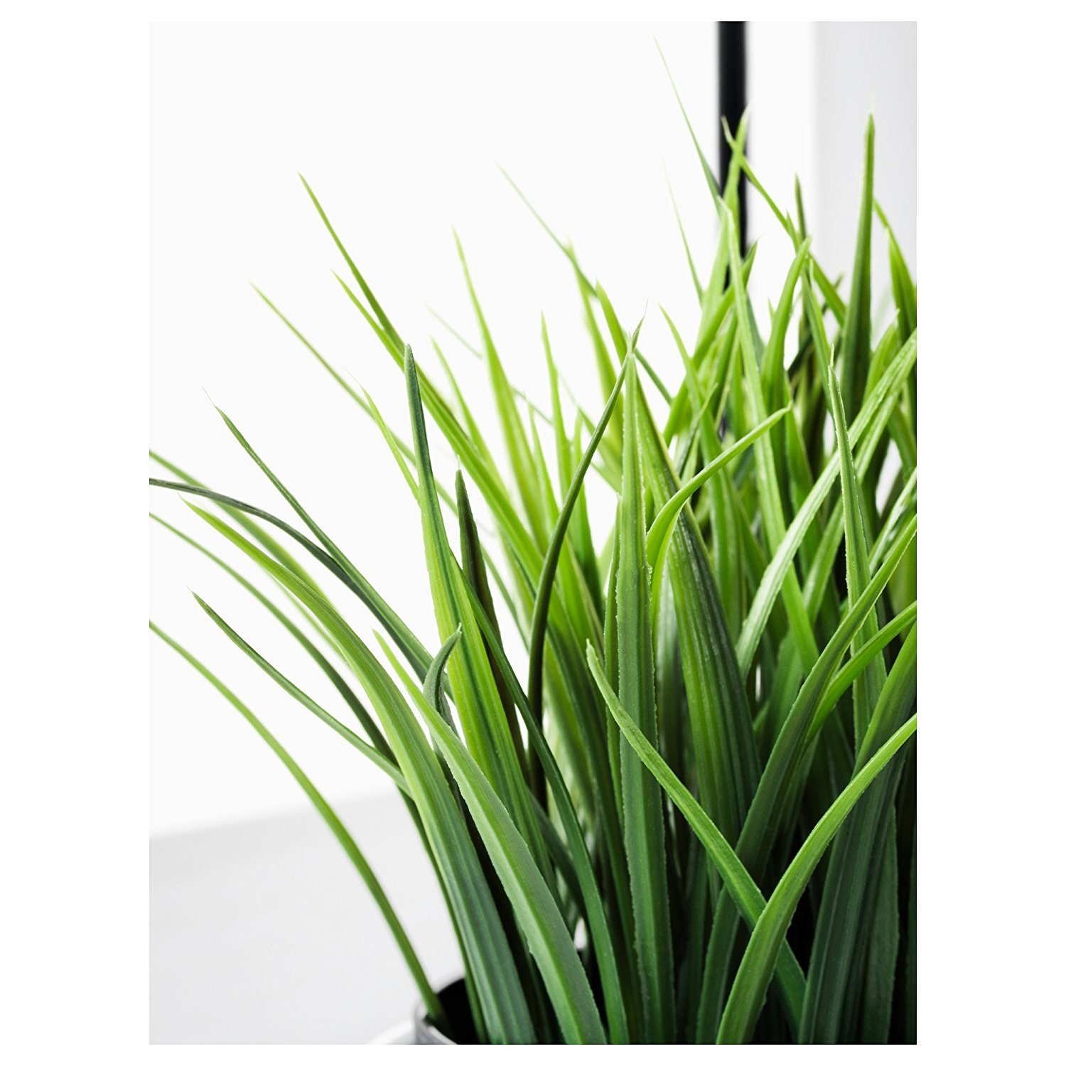 ikea artificial potted plant wheat grass inch home garden decor flora flowers. Black Bedroom Furniture Sets. Home Design Ideas