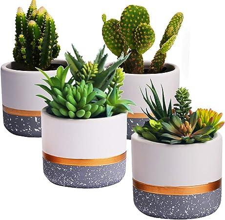 Amazon Com Modern White Ceramic Indoor Succulent Pots 2 8