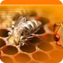 results for how to raise honey bees how to raise backyard honey bees