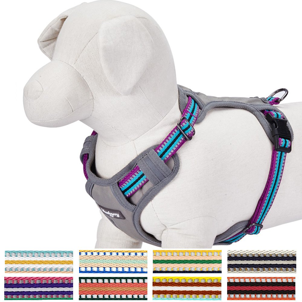Blueberry Pet Soft & Comfortable 3M Reflective Multi-colored Stripe Mesh Padded Dog Harness Vest