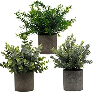 "Zcaukya Small Potted Artificial Plants, Artificial Eucalyptus Plants Fake Rosemary 9.5"" Plastic Greenery Plants for Home Office Garden Decor, Indoor & Outdoor, Set of 3"