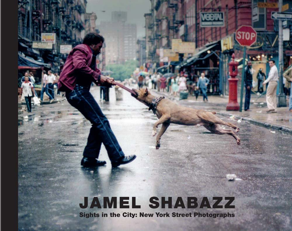 Download Jamel Shabazz: Sights in the City, New York Street Photographs pdf epub
