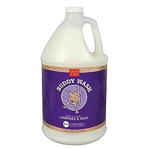 Cloud Star's Buddy Wash Original Lavender & Mint 2 in 1 Shampoo + Conditioner - Gallon