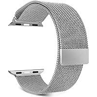 Apple Watch Seri 1 2 3 4 42-44 Mm Uyumlu Markacase Metal Mıknatıslı Kordon (44 Mm, Gümüş)