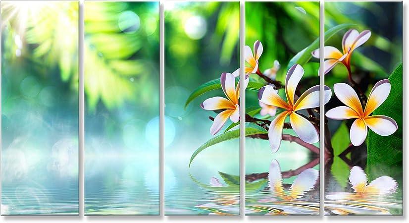 islandburner Cuadro Cuadros jardín Zen japonés con Frangipani y la Niebla sobre el Agua Impresión sobre Lienzo - Formato Grande - Cuadros Modernos: Amazon.es: Hogar