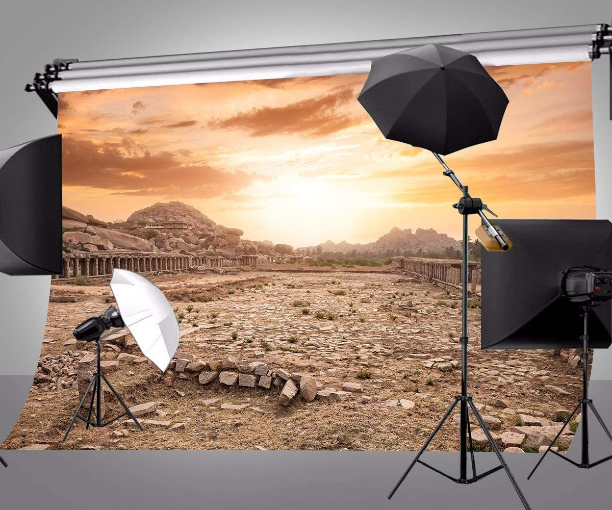 GoHeBe 10 x 7 FT Polyester Ancient Ruins Evening Photography Backdrop Background Studio Photo Props 107-283