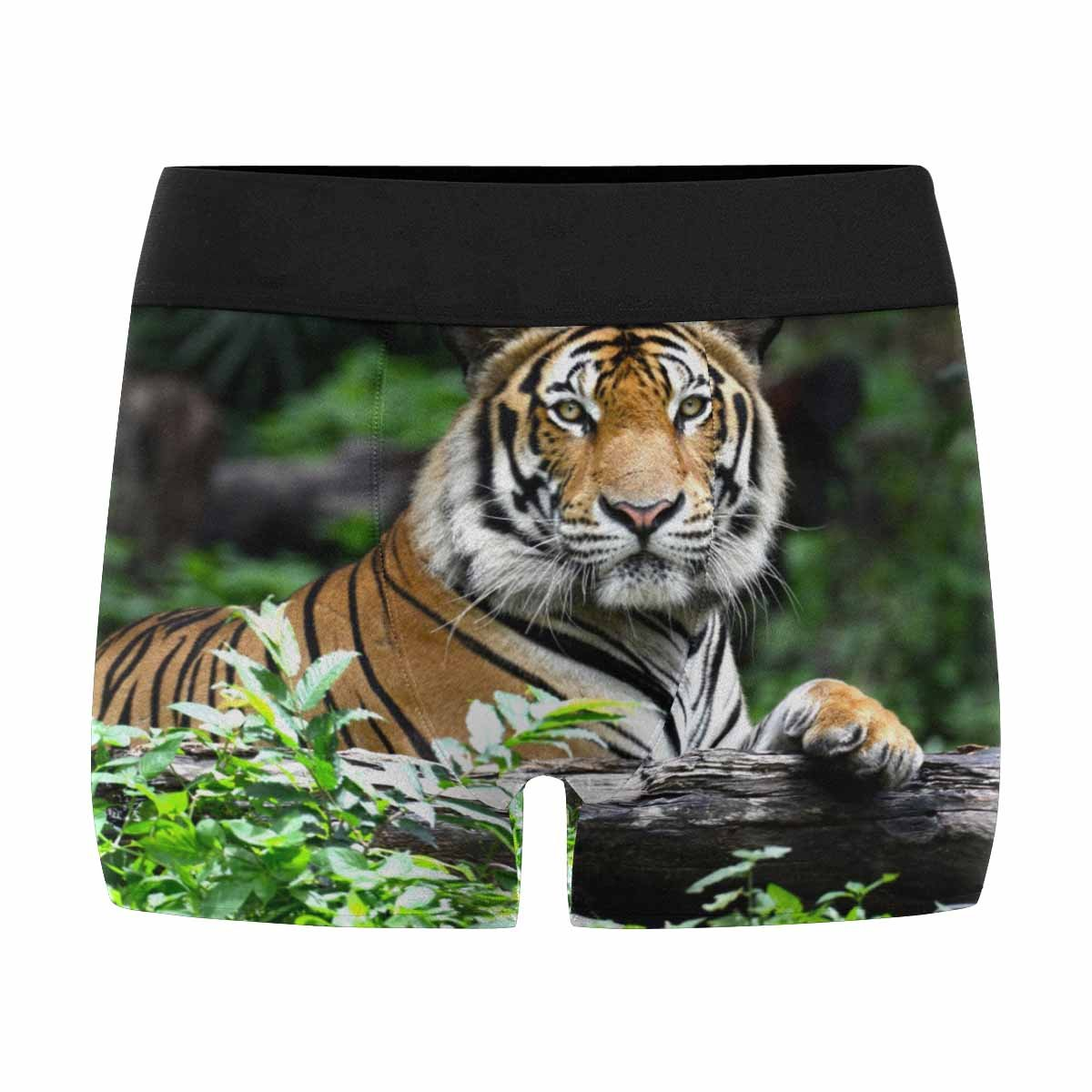 XS-3XL INTERESTPRINT Mens Boxer Briefs Underwear Bengal Tiger in Forest Show Head and Leg