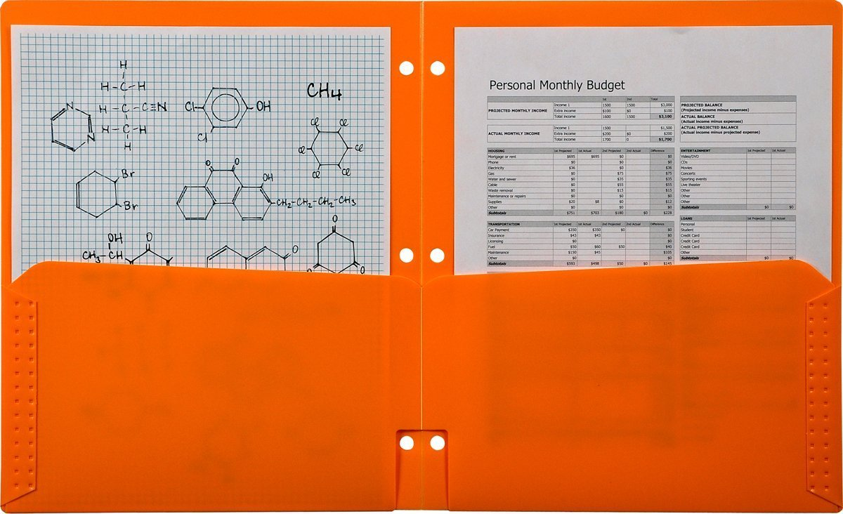 Generic Plastic Folder for Binder, Mandarin Orange