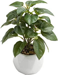 Keleer Potted Artificial Plants Real Looking Faux Fiddle Leaf Fig Plant in White Porcelain Pot for Home Decor and Office Desktop (Green Fiddle Leaf Fig Plant)