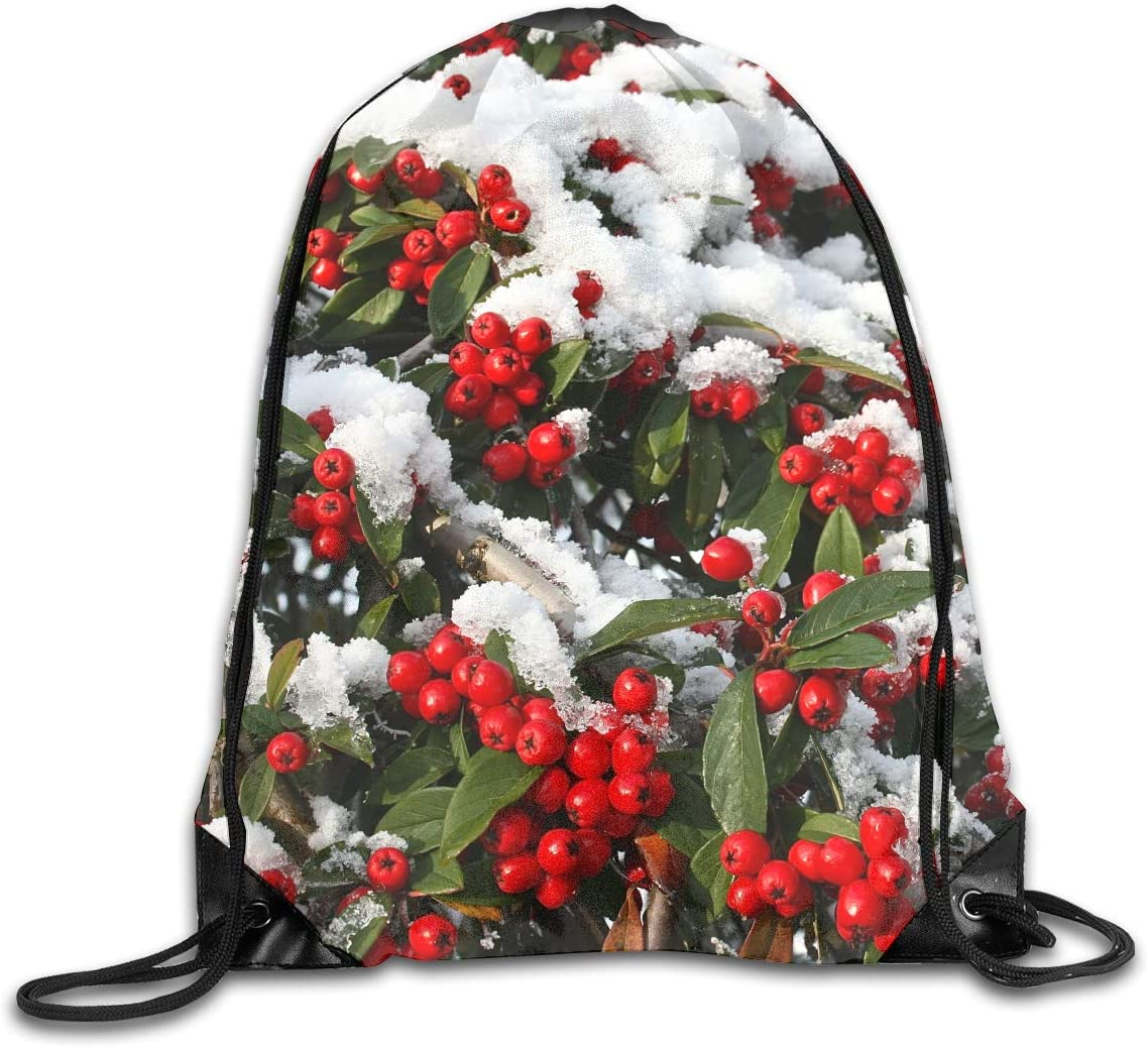 CoolStuff Travel Shoe Bags,Christmas with Holly Berry Drawstring Backpack Hiking Climbing Gym Bag,Large Big Durable Reusable Polyester Footwear Protection