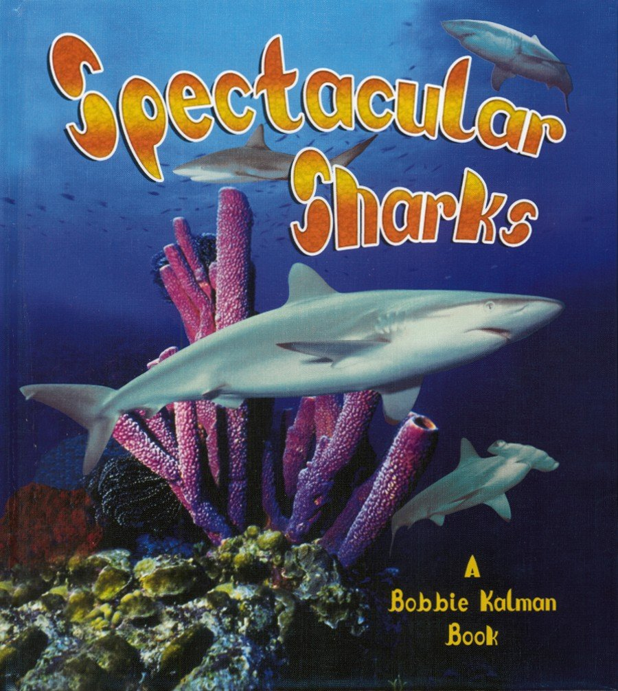 Spectacular Sharks (Living Ocean (Hardcover)) by Crabtree Publishing Company (Image #2)