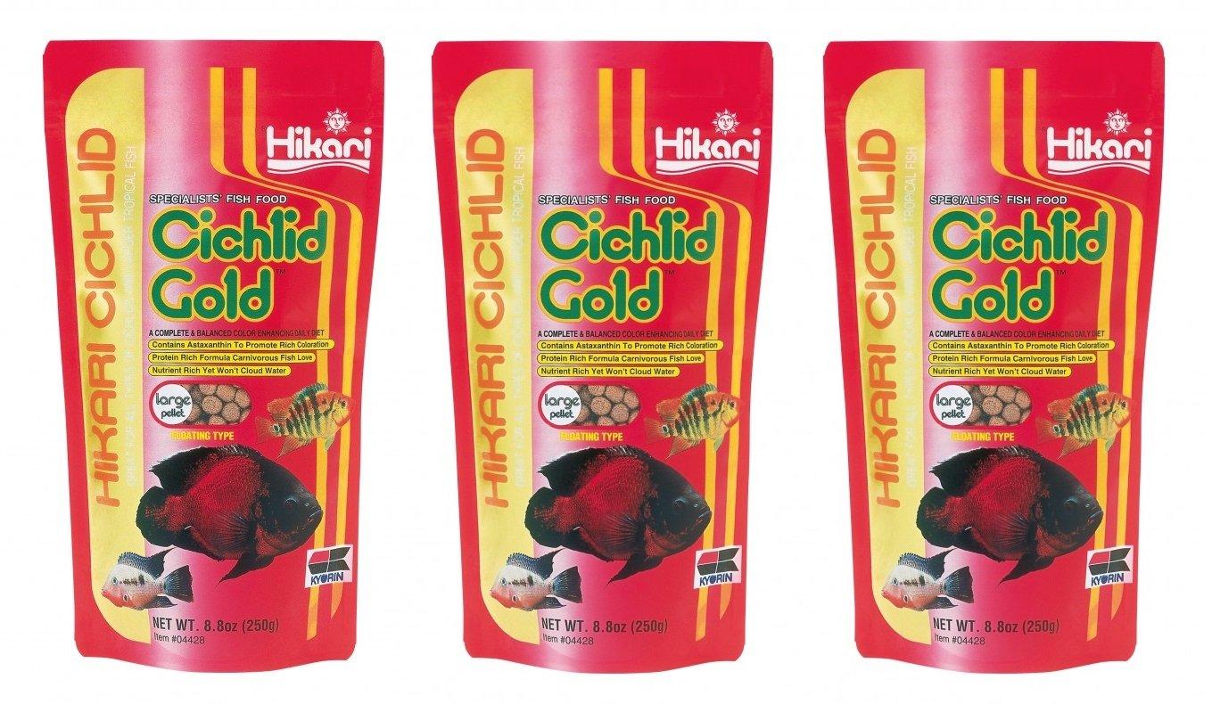 (3 Pack) Hikari Cichlid Gold Floating Pellets Large, 8.8-Ounce by Hikari