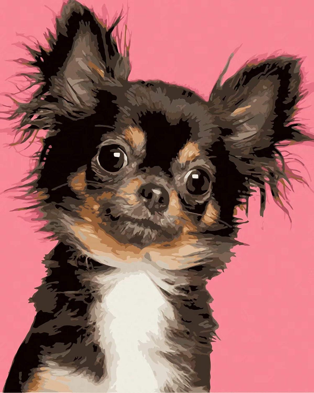 Frameless Little Chihuahua,19.7 X 23.6 Inch Diamond Painting 5D Diy Diamond Painting Kit Diamond Painting Full Drill