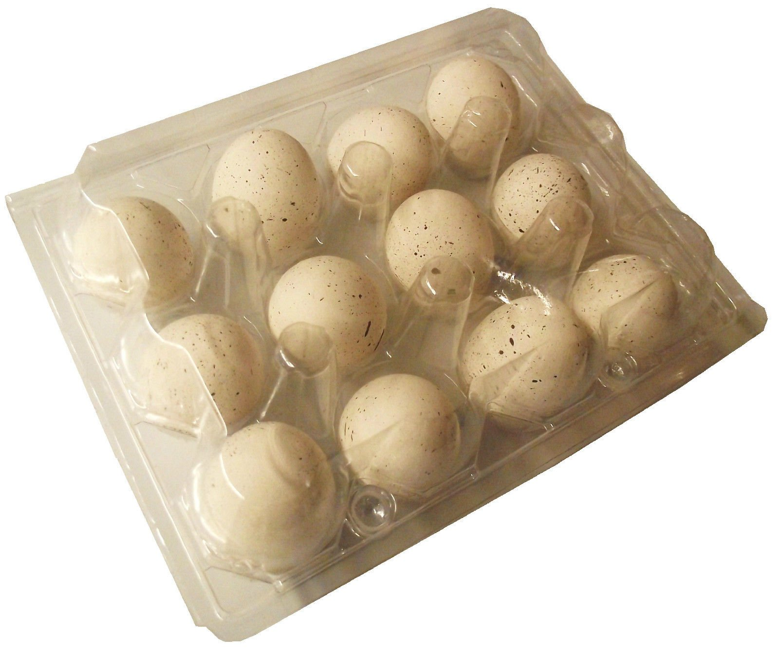 200 PACK RITE FARM PRODUCTS 12 EGG CLEAR POLY QUAIL CARTON TRAY BOBWHITE COTURNIX