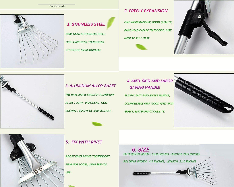 ZaoProteks ZP5802 Stainless Steel Garden Leaf Rakes, Hay Rake, Lawn rake (Black Handle) by ZP ZaoProteks (Image #2)