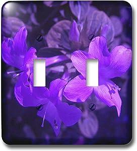 3dRose lsp_7498_2 Purple Pop Double Toggle Switch, Multicolor