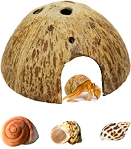Hermit Crab Shell Growth Seashells Natural Coconut Shells Hut for Fish Tank Decor Hide Reptile Hideouts