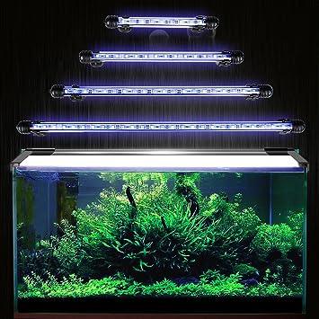Iluminación para acuario GreenSun, LED, 5050 SMD, enchufe europeo, luz azul, resistente al agua, Azul: Amazon.es: Productos para mascotas