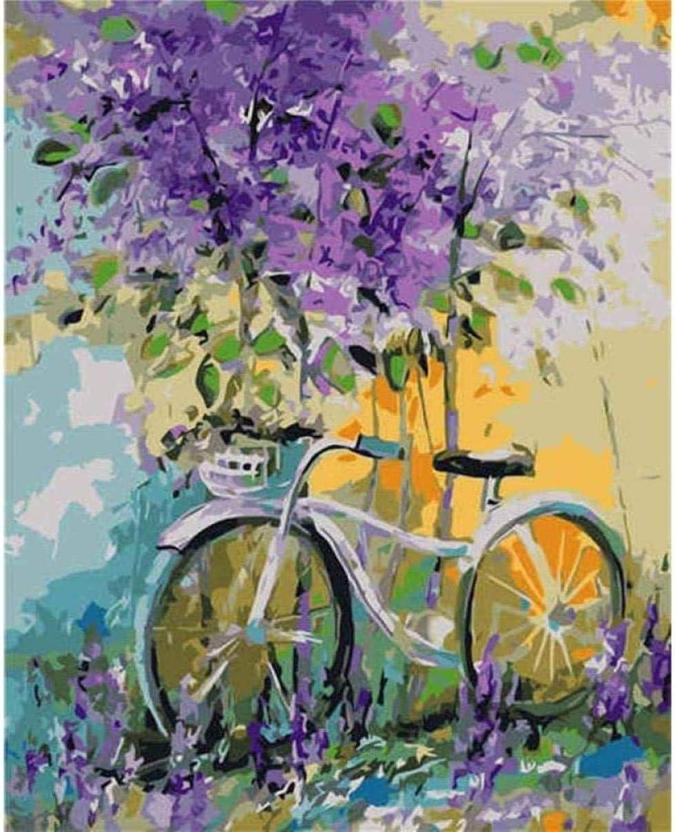IOIUG Flor y Bicicleta Cuadros Modernos Lienzo Pintura acrílico Digital Lienzo Pintado a Mano Pinturas al óleo Cuadros de Arte de Pared--No Frame-40x50cm