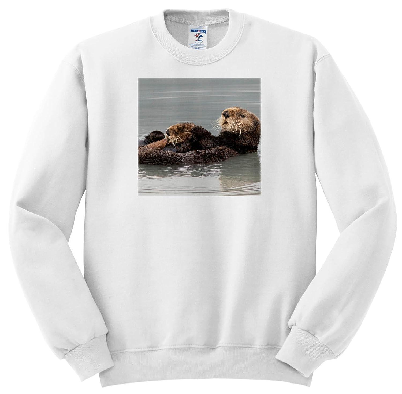3dRose Danita Delimont Musk Ox Animals T-Shirts