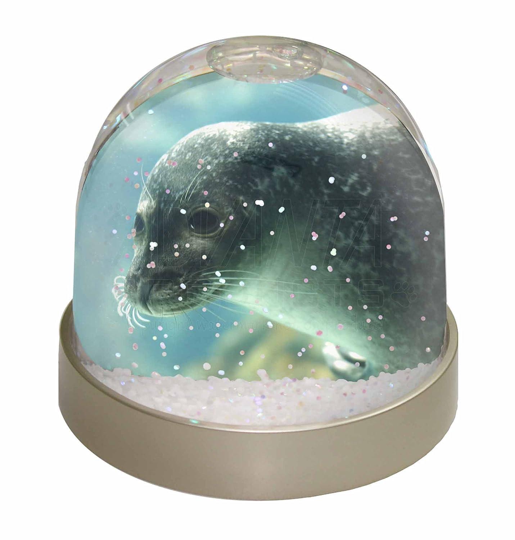 Advanta Sea Lion Snow Dome Globe Waterball Gift, Multi-Colour, 9.2 x 9.2 x 8 cm Advanta Products AF-S1GL