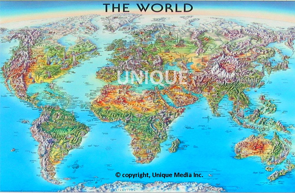 the world laminated map unique media 9780921338611 amazoncom books